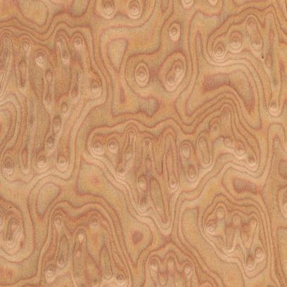 Фанера Шпонированная Дуб Корень BCE 600 M